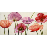 Canvas California Poppies 38 x 79cm